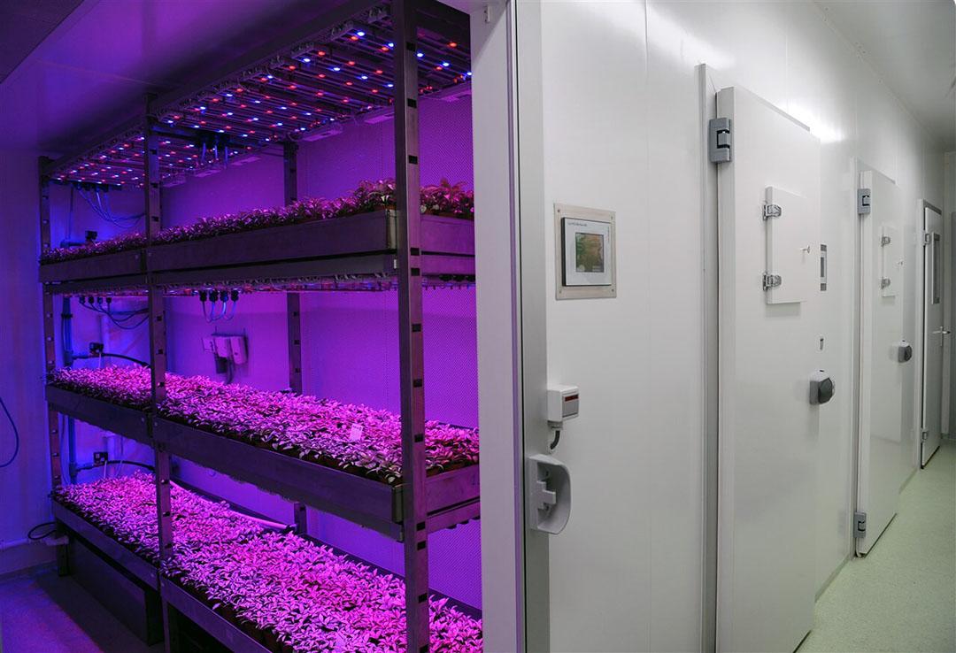 Productielocatie van Plantlab. - Foto: ANP/Marcel van den Bergh
