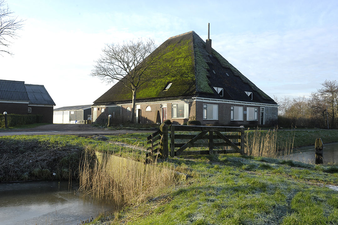 Boerderij in Noord-Holland (archiefbeeld) - Foto: Fotopersbureau Dijkstra