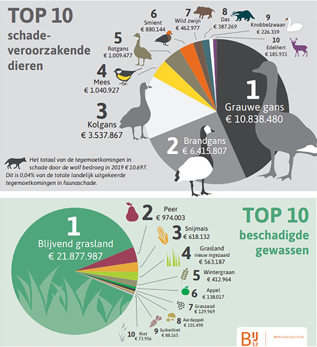 Top 10 schade veroorzakende dieren en top 10 beschadigde gewassen in 2019. - Illustratie: BIJ12