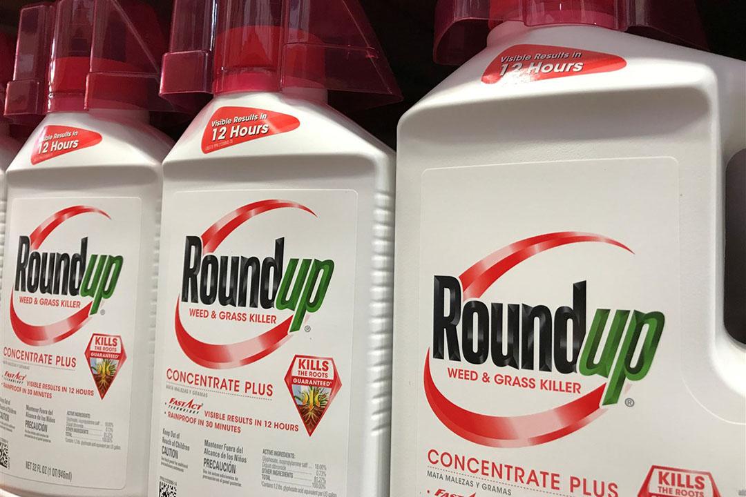 Een commissie van wetenschappers moet zich buiten over de bepaling of glyfosaat, dat in Roundup zit, kankerverwekkend is. - Foto: Reuters