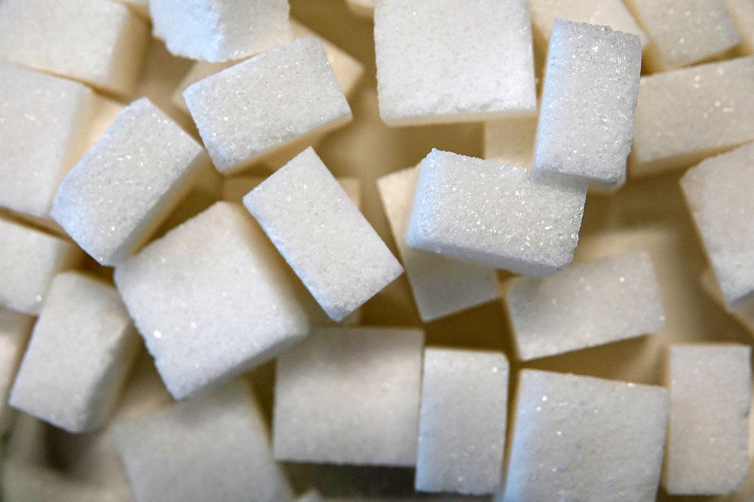Suiker. - Foto: Misset/Lex Aalders