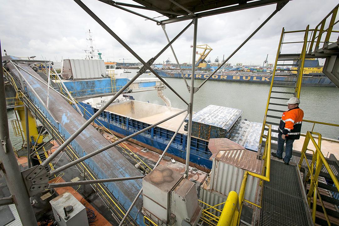 Overslag van mais in de Rotteddamse haven. In tegenstelling tot olie, erts en kolen zat er bij agribulk wel groei in de overslag. - Foto: Roel Dijkstra