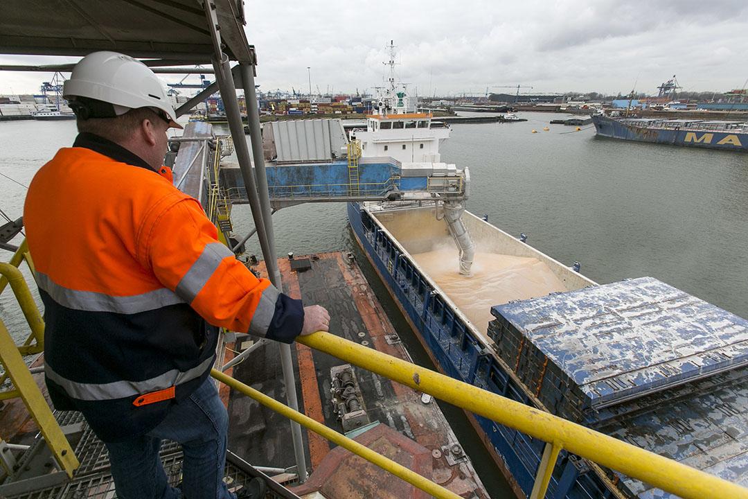 Overslag van mais in de haven. - Foto: Roel Dijkstra