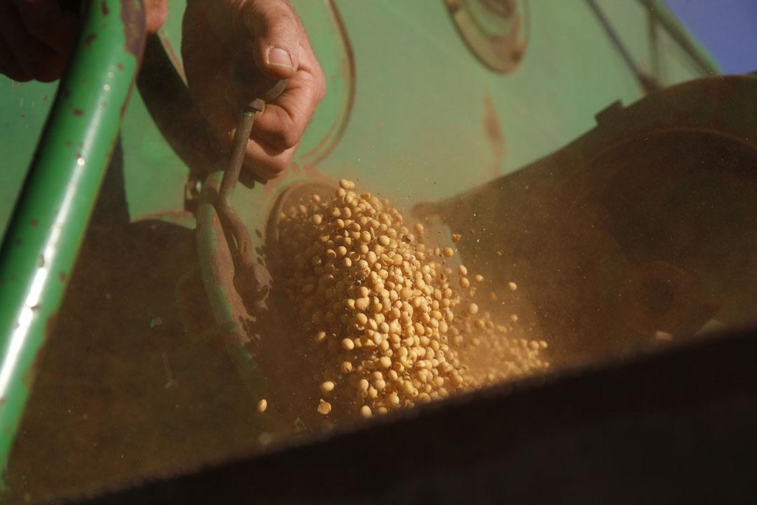 Door voortdurende investeringen en partnerschappen is Vicentin een van de grootste sojaverwerkers in Argentinië geworden. Foto: Hans Prinsen