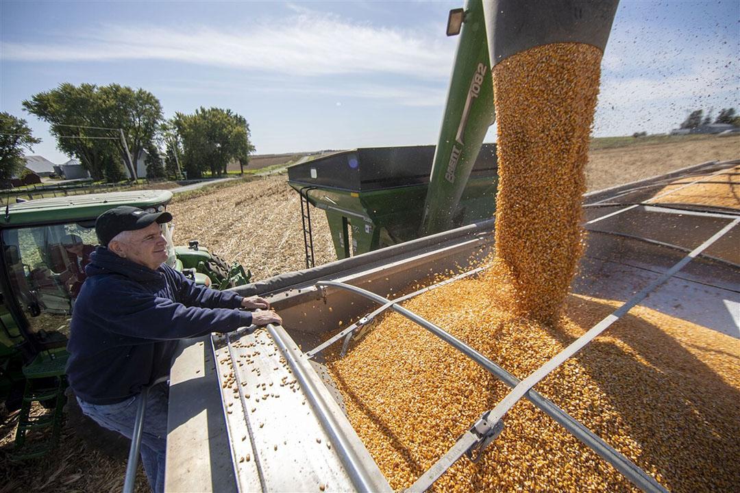 Een Amerikaanse akkerbouwer in Atlantic, Iowa oogst mais. - Foto: ANP