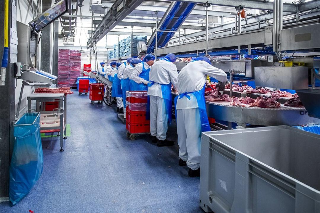 Personeel van varkensslachterij Westfort aan het werk voordat het coronavirus uitbrak. Foto: ANP
