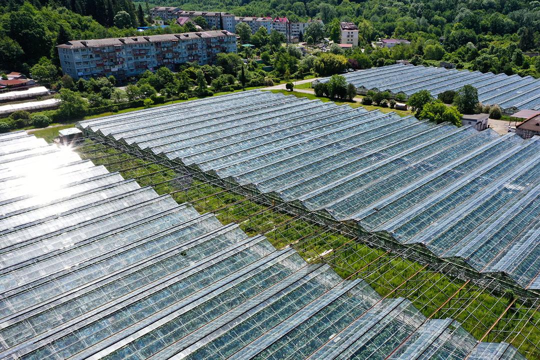 Komkommerkassen bij de Russische stad Sotsji. De toekomst van het wereldwijd voedselsysteem kan niet zonder bedekte teelt. - Foto: Dmitry Feoktistov/TASS/ANP