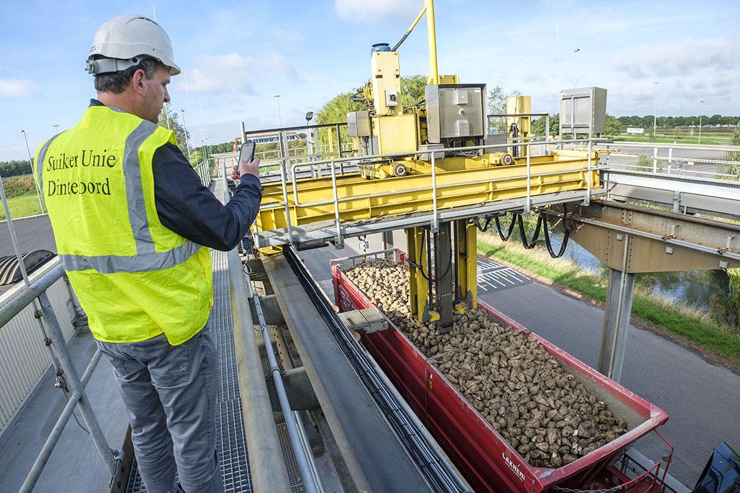 Suikerbieten worden aangeleverd bij Cosun Beet Company (voorheen Suiker Unie) in Dinteloord. De fabrieken starten dit seizoen later op dan gepland. - Foto: Roel Dijkstra