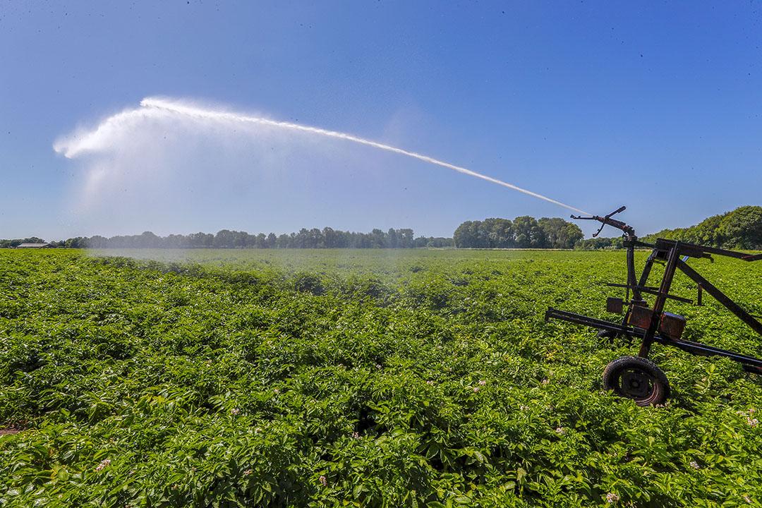 Beregenen, ook moet grondwater moet altijd mogelijk zijn, maar wel als laatste redmiddel, vindt onder andere waterschapsbestuurder Dirk Siert Schoonman. - Foto: Bert Jansen