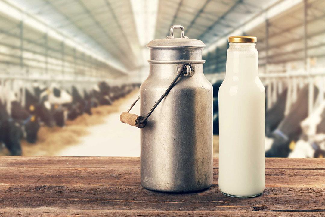 Moet hij zijn zuivelcoöperatie vaarwel zeggen om zelf de verkoop van de melk ter hand te nemen, vraagt columnist Vergaderboer zich af. - Foto: Canva/Ronstik