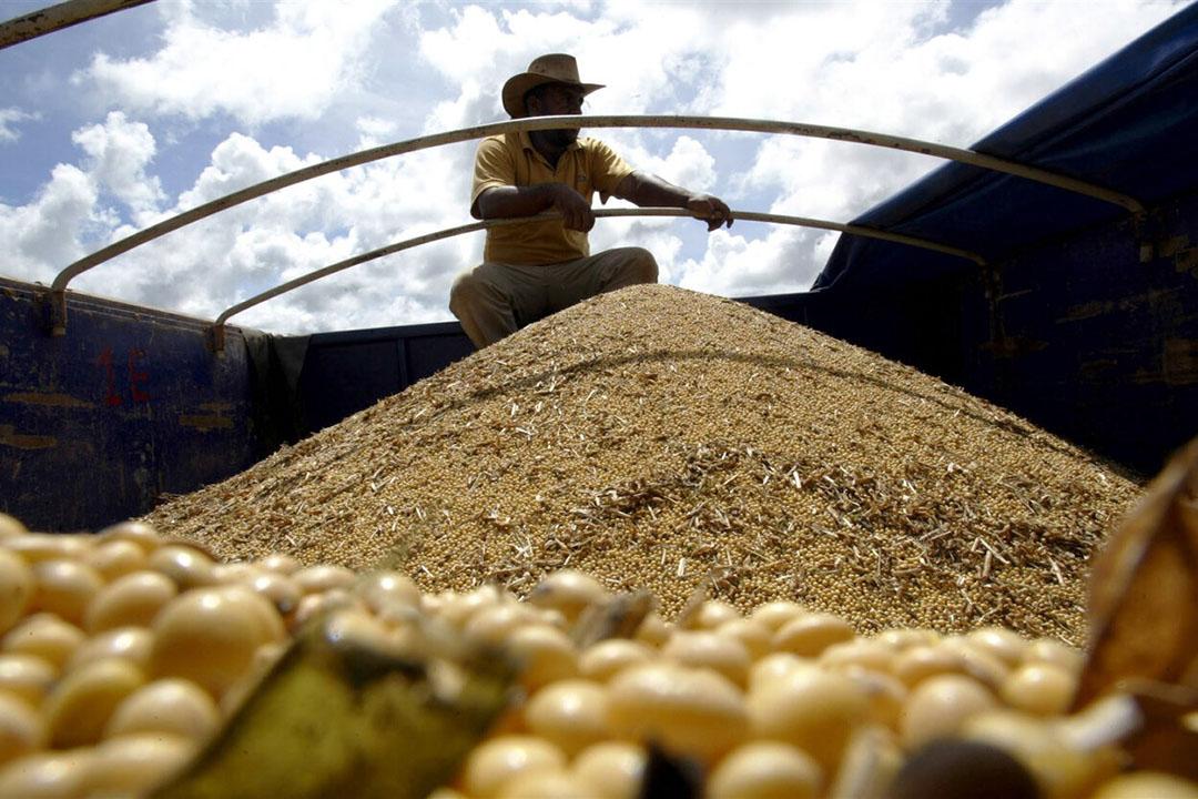 Een vrachtwagen gevuld met sojabonen in Brazilië. Het Zuid-Amerikaanse profiteert van de groeiende vraag naar soja vanuit China. - Foto: ANP