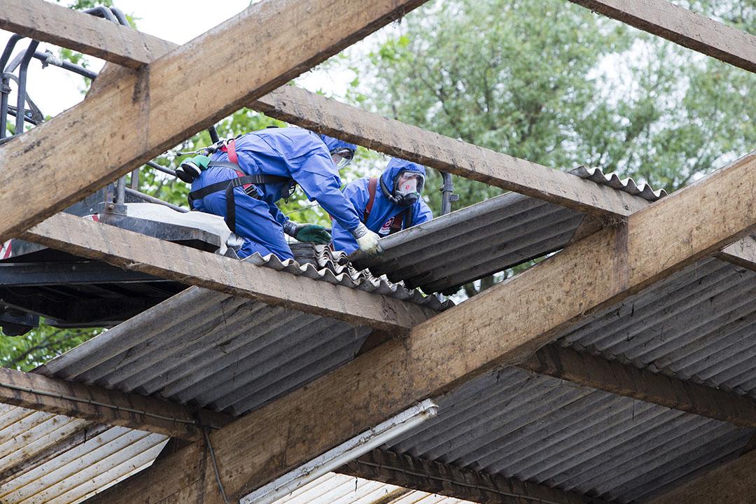 Het asbestdak van een geitenstal in het Friese  Rinsumageest wordt verwijderd. - Foto: Anne van der Woude