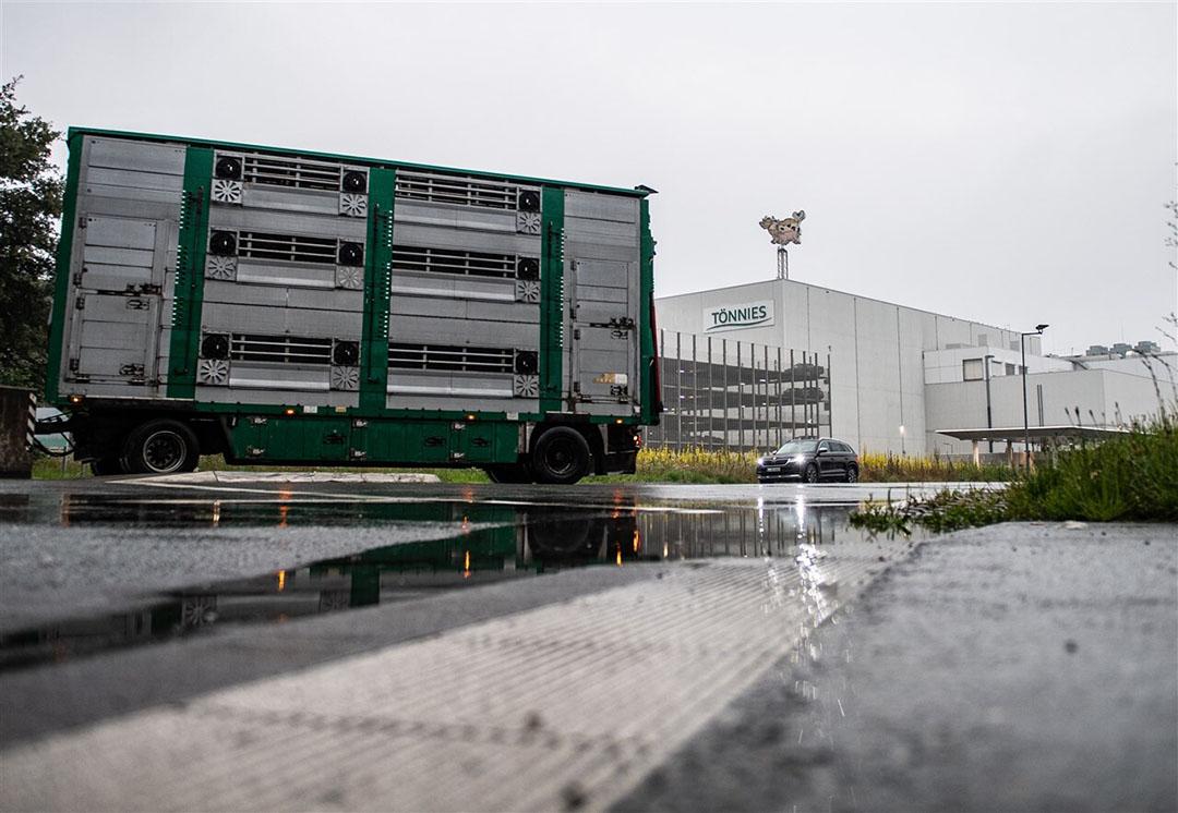 Een vrachtwagen heeft varkens afgeleverd bij de slachterij van Tönnies in Rheda-Wiedenbruck. - Foto: ANP