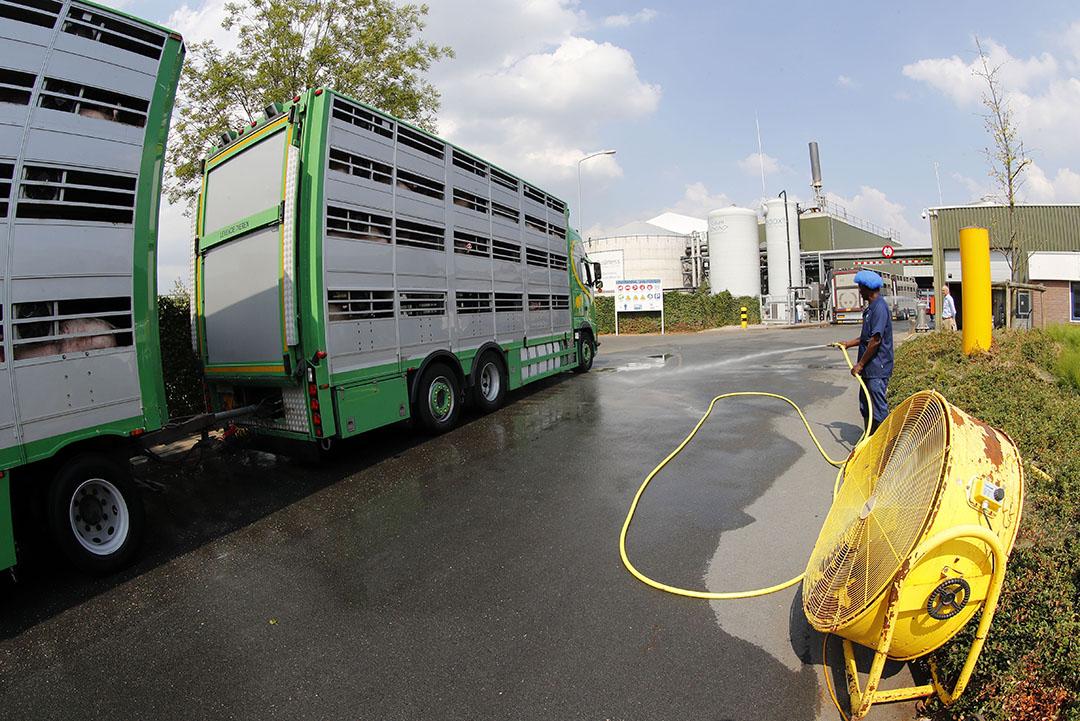 Maatregelen die Vion neemt om hittestress bij dieren te voorkomen. - Foto: Bert Jansen