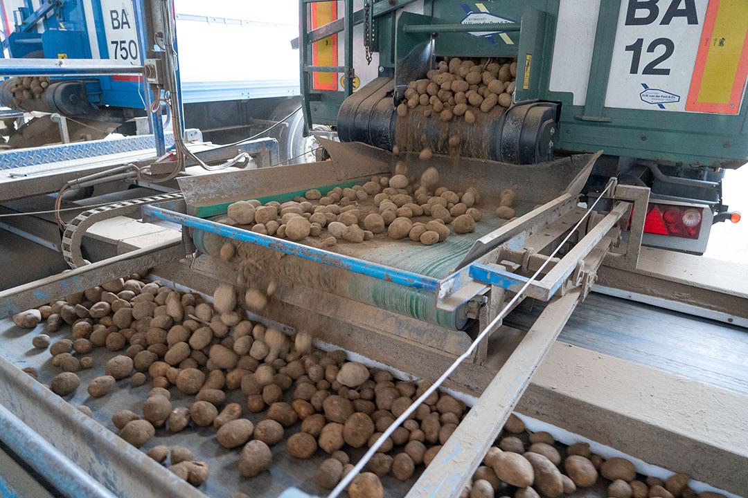 Aardappelen worden verwerkt tot frites. - Foto: Jan Willem Schouten