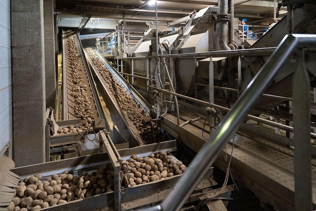 Aardappelverwerking. Foto: Jan Willem Schouten