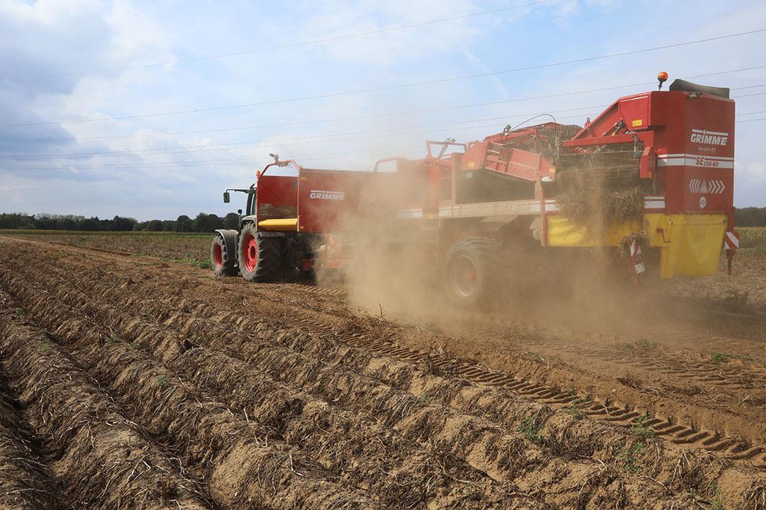 Aardappeloogst in Duitsland. Het groeiende Duitse areaal komt voor rekening van de zetmeelaardappelteelt en de zogenoemde verwerkingsaardappelen. Foto: Henk Riswick