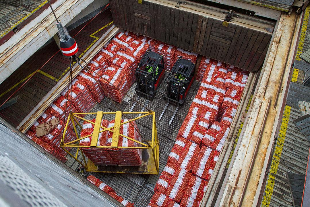 Het laden van uien voor export naar Afrika. - Foto: Peter Roek