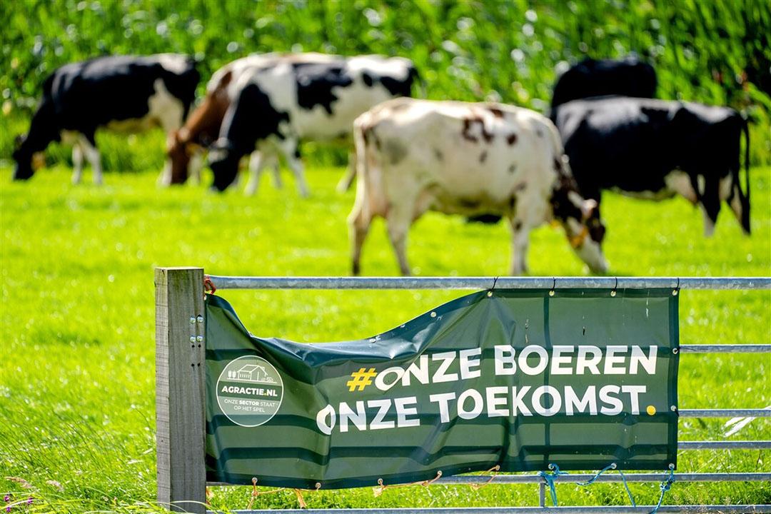 Foto: Nederlandse Freelancers