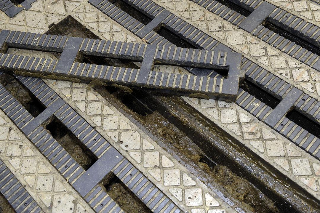 Een emissiearme roostervloer. - Foto: Dijkstra / Cor Salverius
