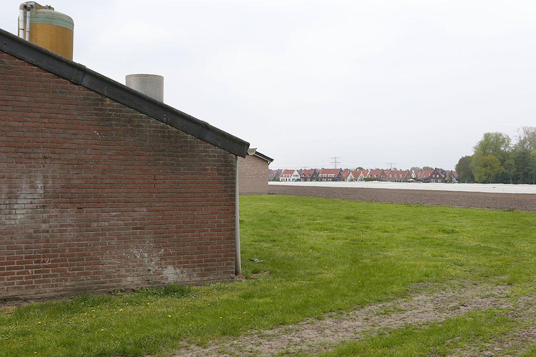 Gemeenten heeft het ministerie gevraagd om meer handvatten op het gebied van welzijn van dieren. Foto: Bert Jansen