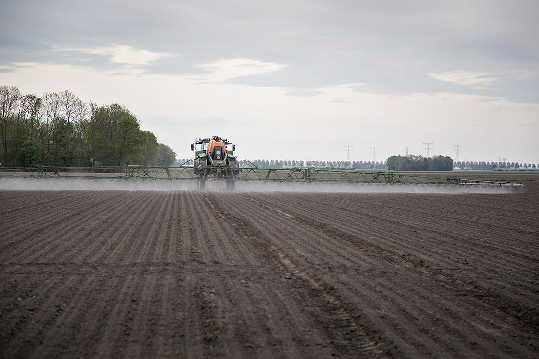 De bodemherbiciden werden onder andere gespoten in uien, zoals bij NPPL-deelnemer Max Sturm in Ens (Fl.) in 2018. - Foto: Jan Willem Schouten