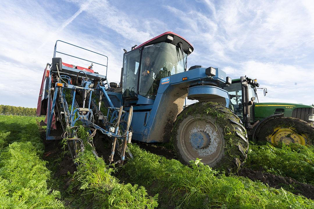 Peenoogst in Flevoland. 'Flevoland is voor biolandbouw de hotspot. We denken daar in met name wortelen en uien het verschil te kunnen maken', aldus de oprichter van Odd.Bot. Foto: Ruud Ploeg