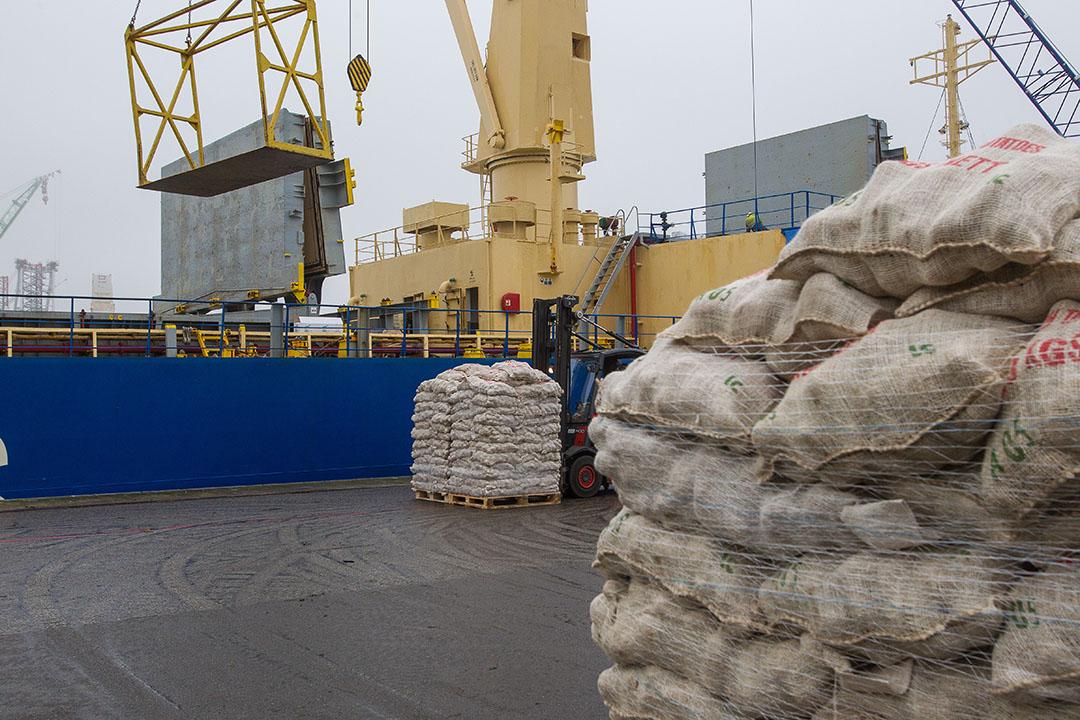 Uien laden voor verscheping naar Senegal. - Foto: Peter Roek