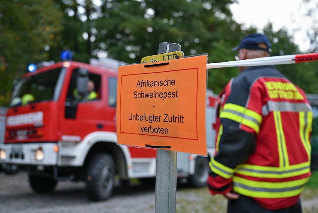 In de Duitse deelstaat Brandenburg is ook de vrijwillge brandweer ingezet om gebieden af te zetten waar met AVP besmette wilde zwijnen zijn gevonden. - Foto: ANP