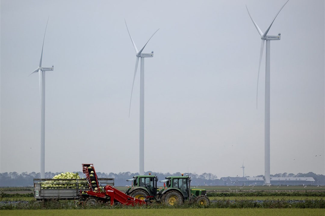 Afgelopen woensdag 30 september is de grootste windpark van Nederland geopend. Het gaat om het windpark in de Noord-Hollandse Wieringermeer. Het park bestaat uit 82 windmolens en wekt elektriciteit op om 370.000 huishoudens van groene stroom te voorzien. - Foto: ANP