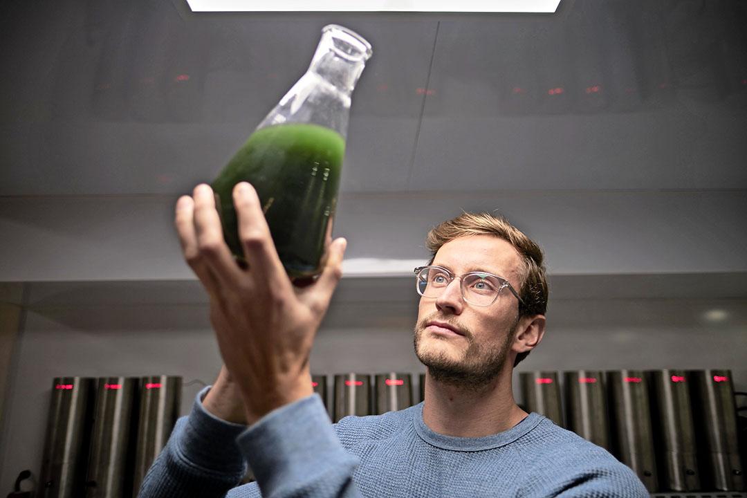 Lars Oostveen, business developer bij Spireaux, met de spirulina voor de testreactoren waarin proeven worden gedaan met de kweek van spirulina. - Foto: Fred Libochant