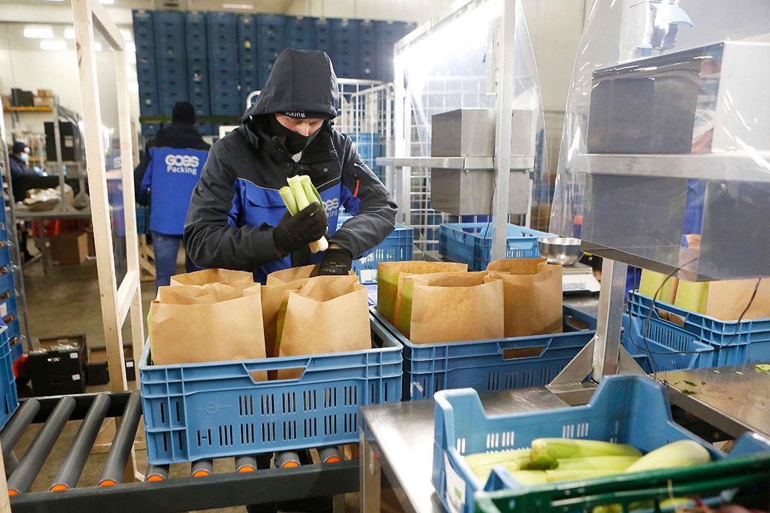 Groenten en fruit vormen de hoofdmoot in de 100 verschillende type pakketten die Ekomenu wekelijks samenstelt. - Foto: Ton Kastermans Fotografie