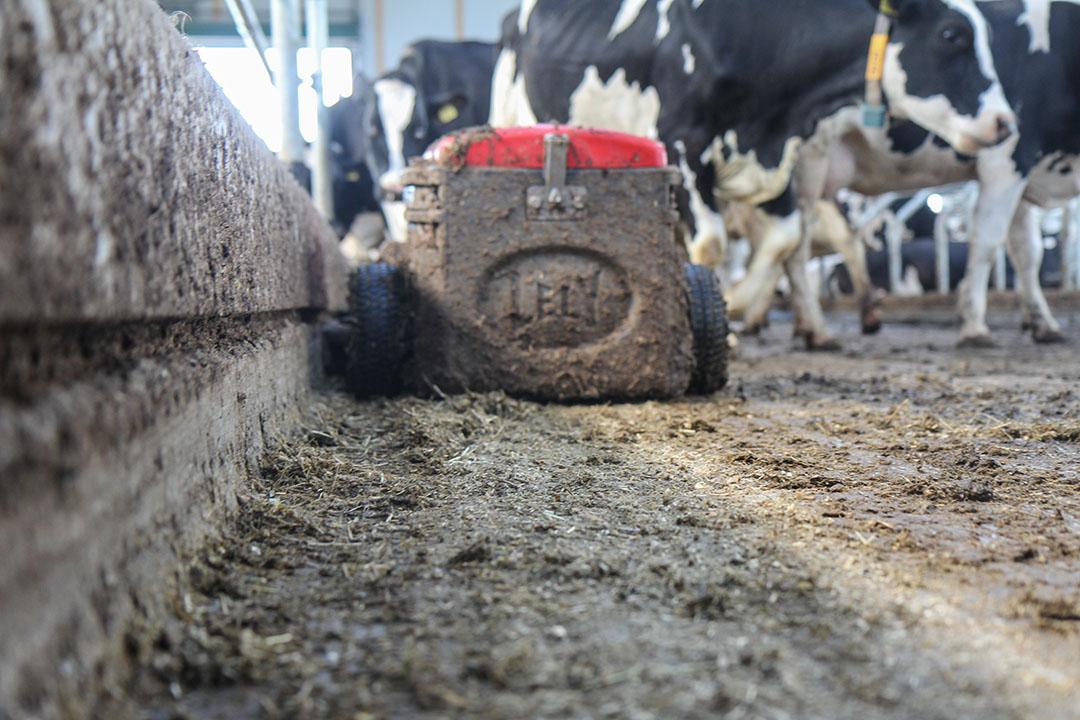 Mestrobot van Lely. Het bedrijf introduceert een nieuw systeem dat de uitstoot van ammoniak met 70% vermindert. - Foto: Matthijs verhagen