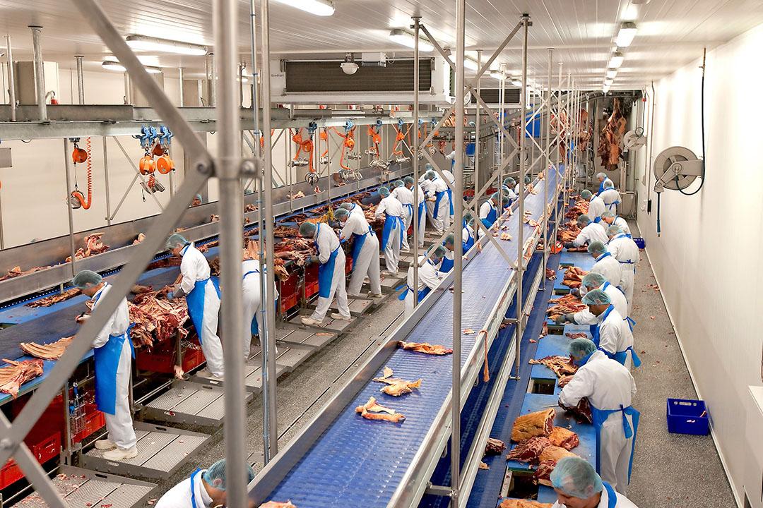 Vion's uitbeenafdeling in Enschede. In Duitsland gaat het bedrijf stoppen met flexcontracten via uitzendbureaus. De werknemers komen in vaste dienst. - Foto: Ronald Hissink