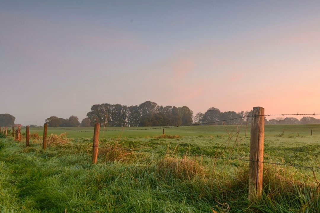 Het Overijsselse platteland. Foto: Canva