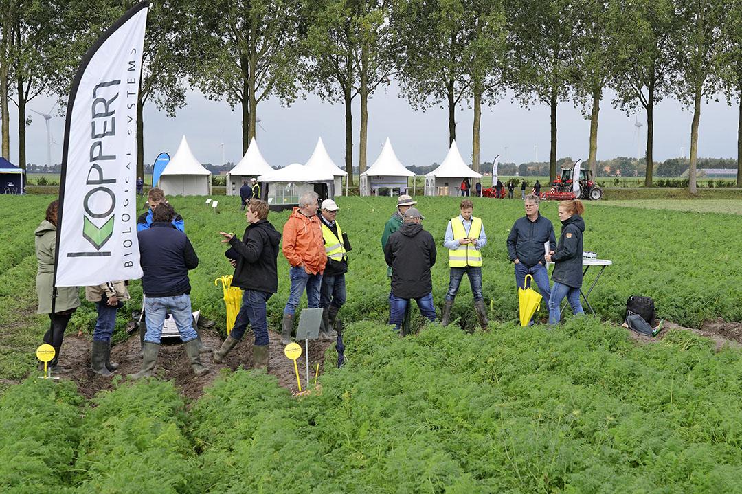 Kleine groepjes worden over het proevenplatform geleid. - Foto: Ruud Ploeg