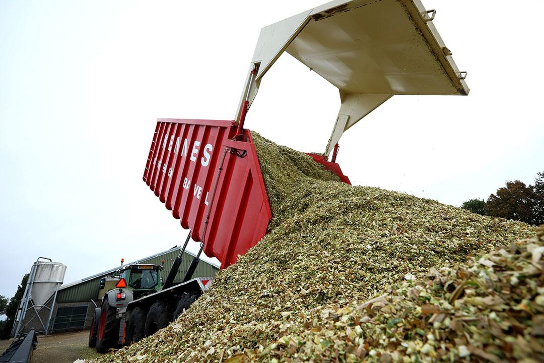 Inkuilen van gehakselde mais. - Foto: Henk Riswick