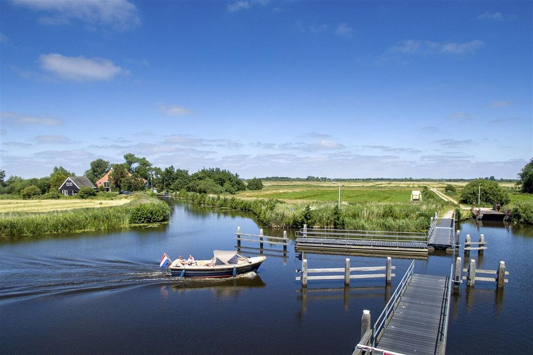 Veenweidegebied in Friesland. - Foto: ANP