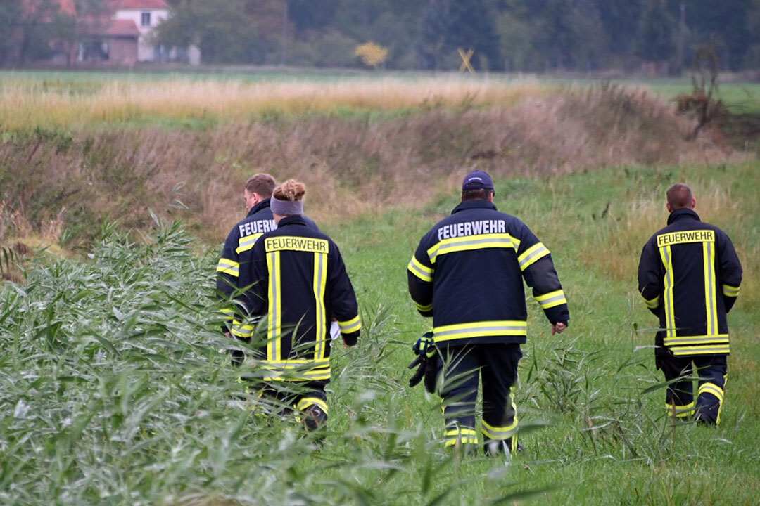 Leden van de brandweer in Brandenburg, Duitsland, zoeken naar dode wilde zwijnen. - Foto: ANP