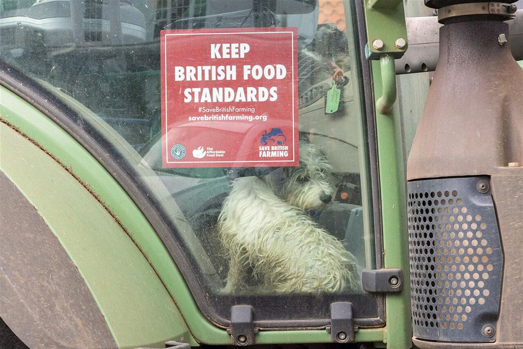 Brits boerenprotest in oktober dit jaar om eisen te stellen aan de import van voedingsmiddelen om daarmee een gelijk speelveld te hebben voor Britse boeren. - Foto: ANP