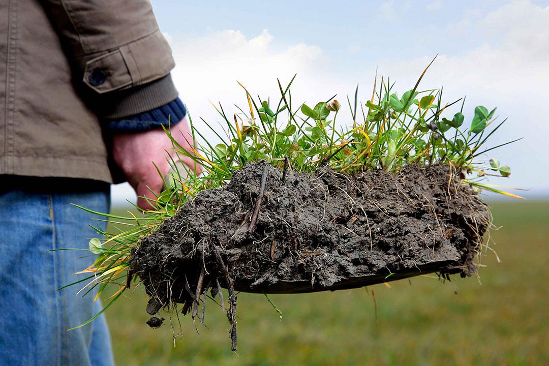 Boeren die gaan omschakelen naar duurzamere bedrijfsvoering moeten zich richten op zeven doelen zoals emissiereductie, bodemgezondheid en biodiversiteit. - Foto: Ruud Ploeg
