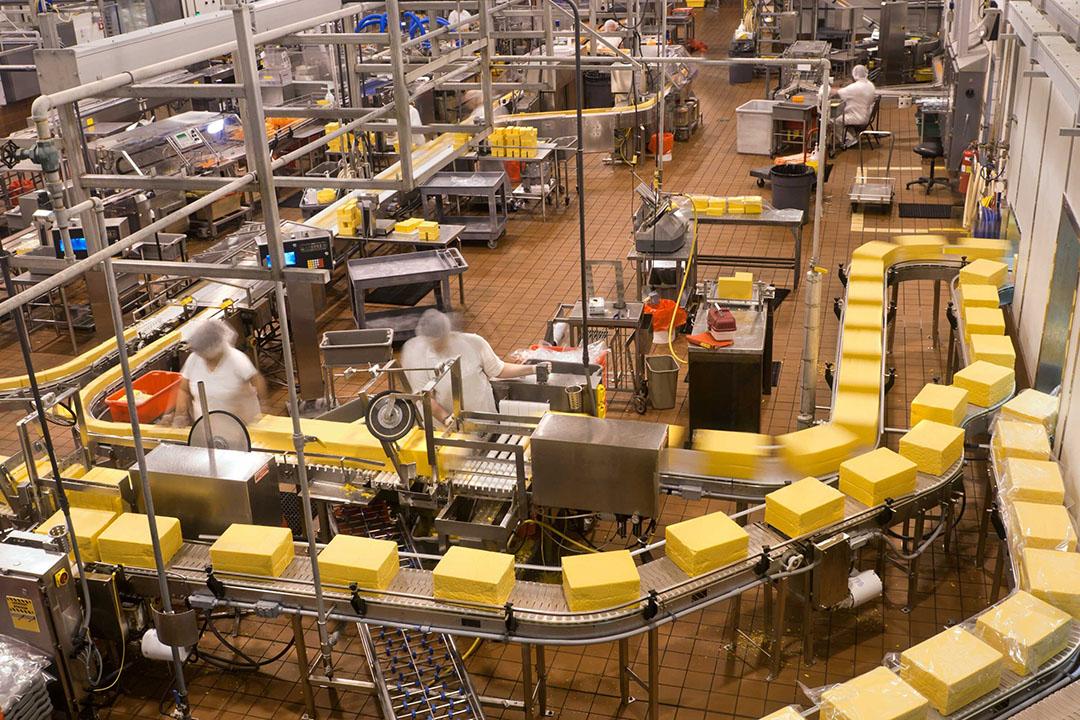 A-Ware en Glanbia willen begin 2021 starten met de bouw van de fabriek voor 'Nederlandse' kaas en die in 2022 in gebruik nemen. - Foto: Canva/leezsnow