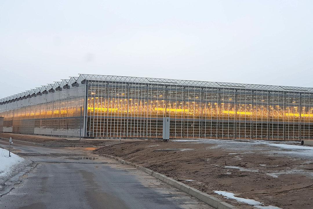 Kassenbouwproject in Almaty, Kazachstan. - Foto: Dalsem Greenhouse Projects