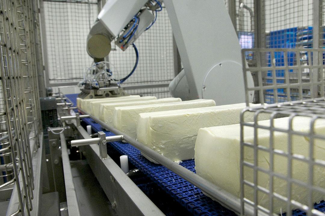 Productie van mozzarella bij Milcobel in Langemark. Foto: Milcobel