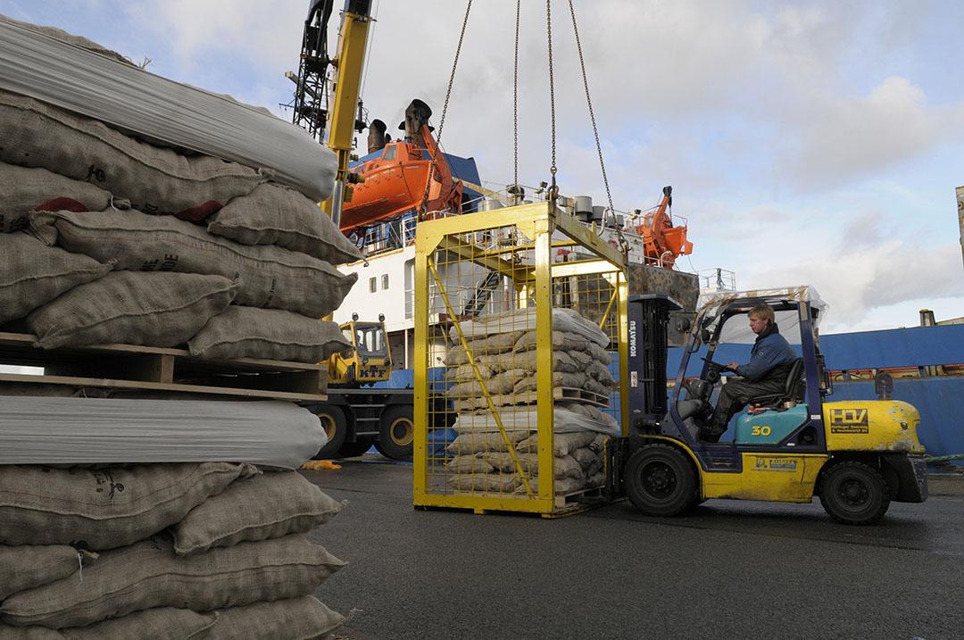 Pootgoedaadappelen worden geladen voor export in de haven van Harlingen. - Foto: Penn Communicatie