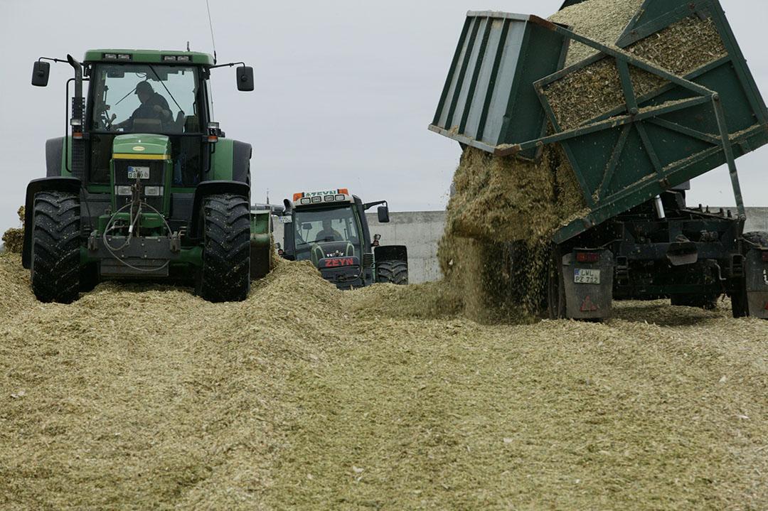 Maisoogst Duitsland. De lagere maisopbrengsten komen met name door lagere opbrengsten in de EU, Oekraïne en de Verenigde Staten. Foto: Henk Riswick