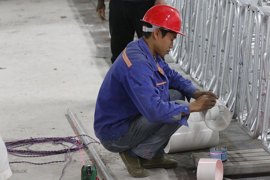 China werkt aan herstel varkensmarkt. Dat gaat sneller dan verwacht. - Foto: Henk Riswick