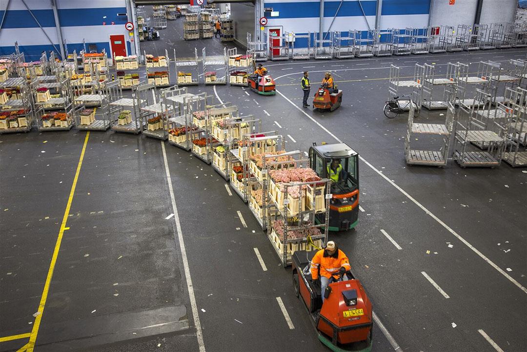 Niet alleen de Nederlandse maar ook de Duitse lockdown is van groot belang voor de afzet van sierteeltproducten. - Foto: ANP