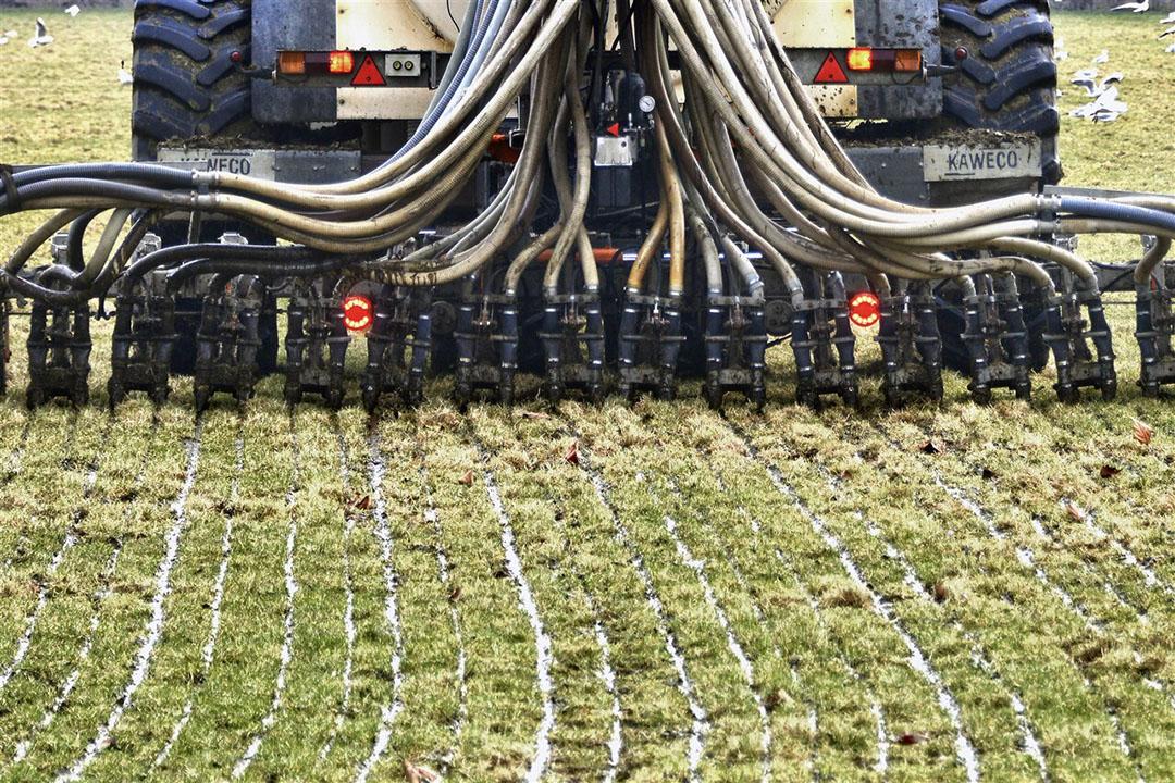 Nederland heeft volgens de Europese Commissie de hoogste emissie van broeikasgassen (CH4 en N2O) per hectare landbouwgrond, meer dan vier keer het gemiddelde van de 27 EU-lidstaten.- Foto: ANP