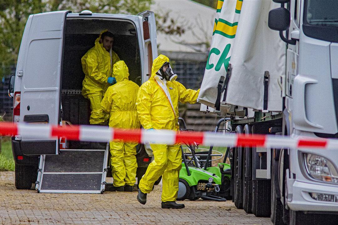 Ruiming eendenfokkerij in Terwolde vanwege vogelgriep. - Foto: ANP